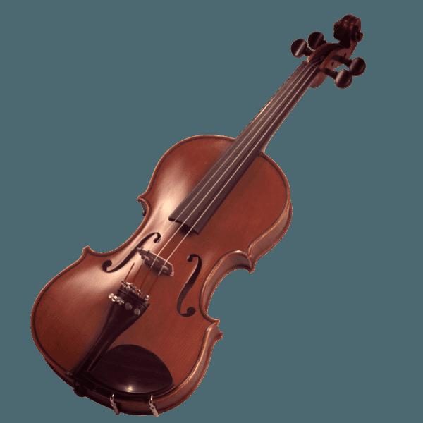 evento musical en madrid, violín para tu fiesta, boda, comuniones, congresos, funerales